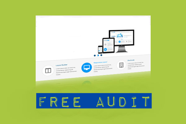 Free Audit Bristol